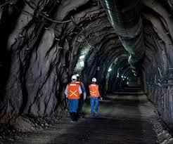 Newmont advierte sobre inflación de costos para mineras por COVID-19