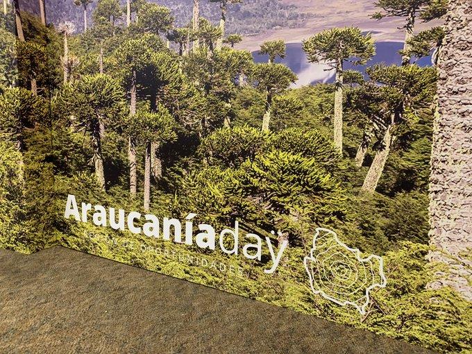 Chile espera inversiones privadas por US$2.000mn para La Araucanía