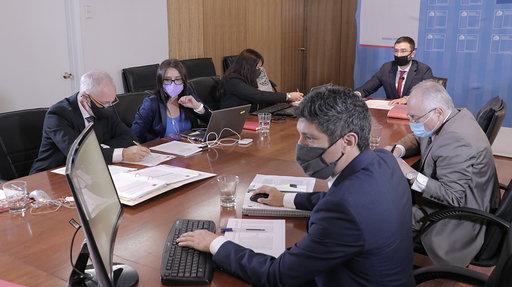Chile abre 23 ofertas técnicas para suministro de buses de sistema RED