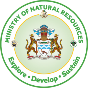 Guyana issues requests for oil, gas consultants