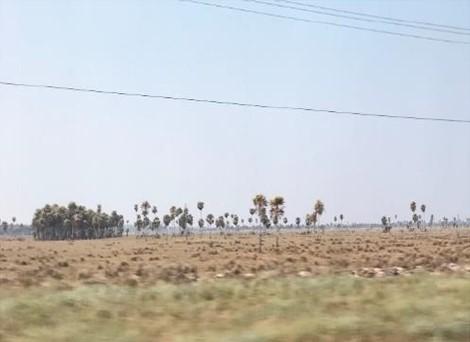 Nuevo proyecto de transmisión en Paraguay superará los 500km