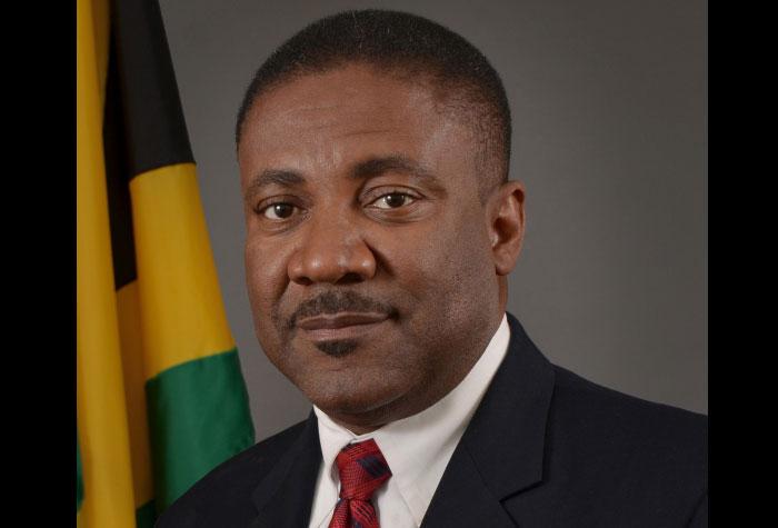Sector energético de Jamaica necesita medidas serias