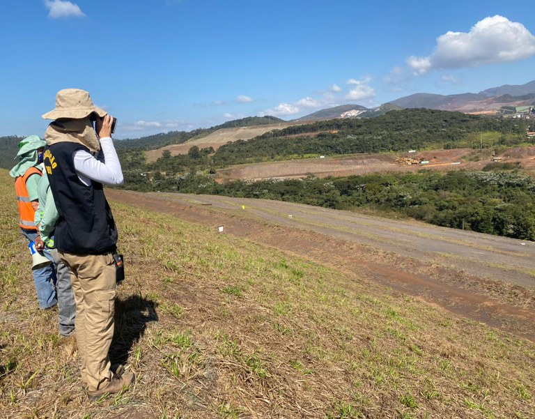 Brazil regulator maintains Vale's Xingu dam risk level