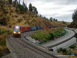 Planes de inversión ferroviaria en Chile requieren importante reestructuración