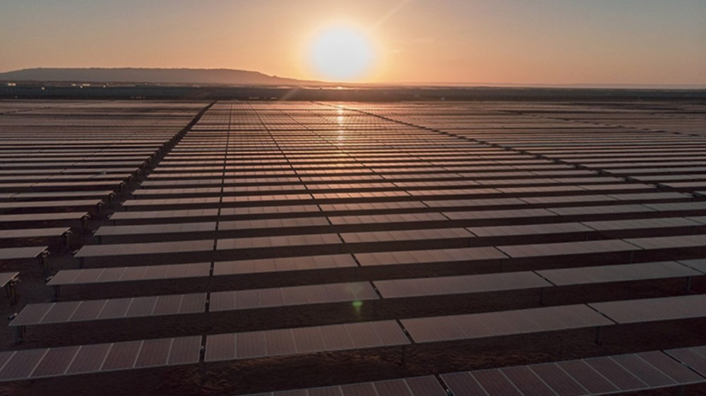 Why are oil companies so driven to investing in Brazil's renewables?