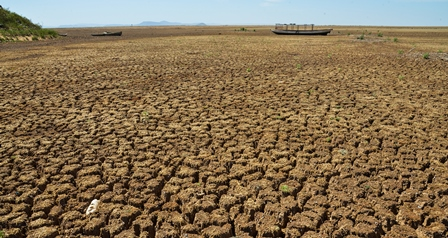 Brazil ups bet on voluntary power rationing in the face of water crisis
