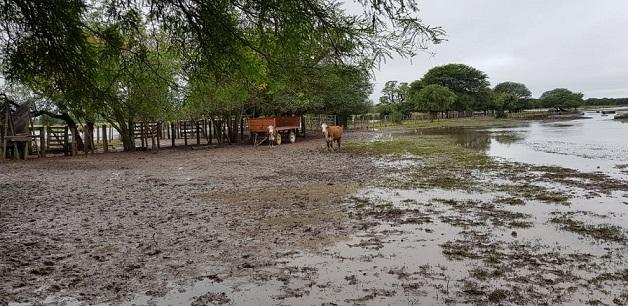 Reconstrucción tras inundaciones en Argentina enfrenta problemas de financiamiento