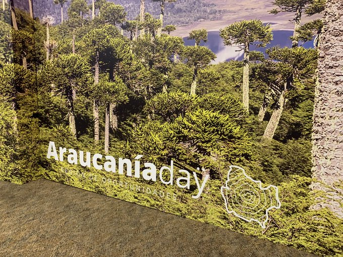 Chile aims for US$2bn in private Araucanía investments