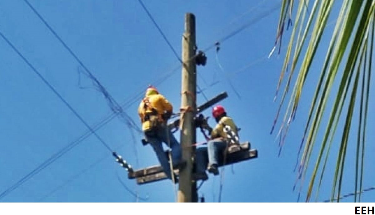 Honduran distributor in the crossfire as losses spike