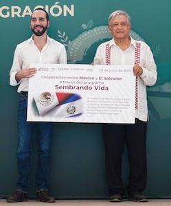 México y El Salvador lanzan iniciativa de reforestación de US$100mn