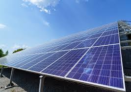 Elora do Brasil vai investir US $ 790 milhões em renováveis
