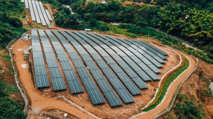 Energía de Pereira inauguró la primera granja solar del Eje Cafetero junto al ministro de Minas y Energía, Diego Mesa