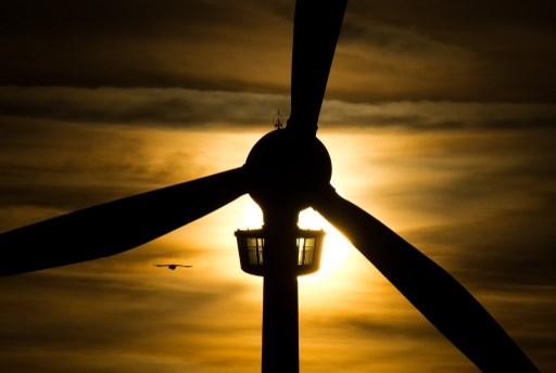 Empresa alemana solicita permiso para parque eólico de US$230mn en Chile