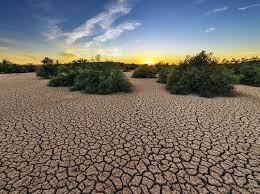 Desastres climáticos han causado pérdidas por US$101.000mn en Sudamérica
