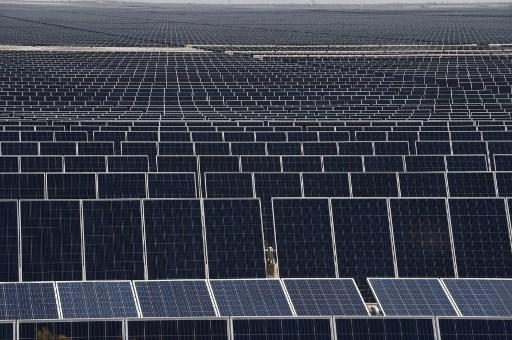 Energías renovables avanzan en México pese a postura de AMLO