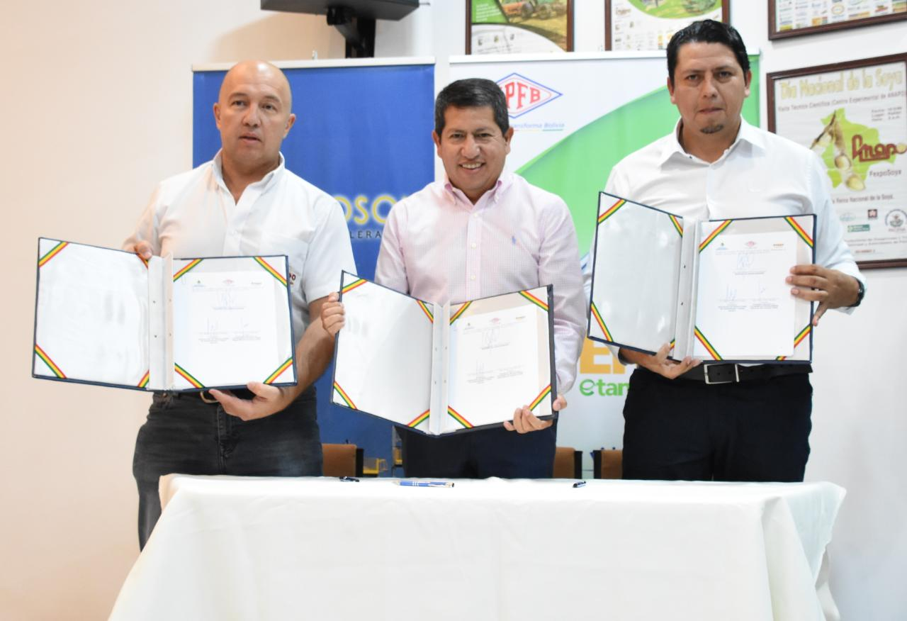 Sorghum producers join the Bolivian ethanol project