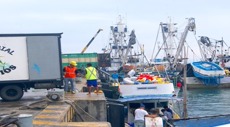 Ecuador issues tender to rehabilitate fishing port