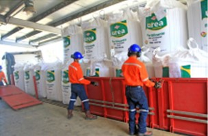 玻利维亚氨和尿素厂巩固了23650万美元的销售额至12月