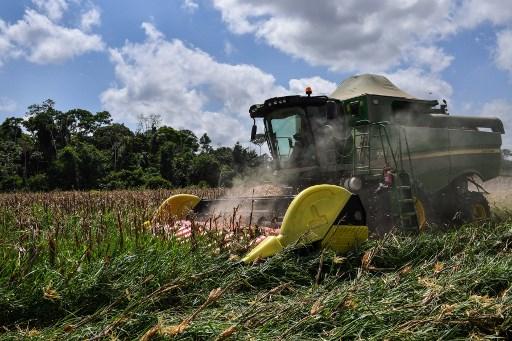 Competencia de agrotecnología se intensifica a través de marketplace