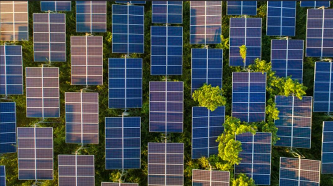 El camino hacia el objetivo crítico y formidable de cero emisiones netas para 2050 es estrecho pero trae enormes beneficios, según el informe especial de la IEA.