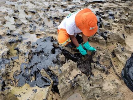 Fight against Brazil oil disaster unites several sectors