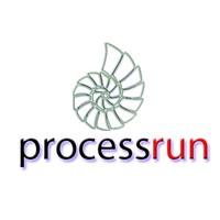 ProcessRun Ltda. (ProcessRun)