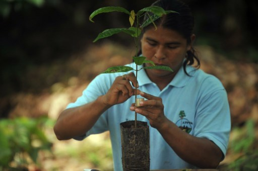 Costa Rica to provide internet to indigenous communities