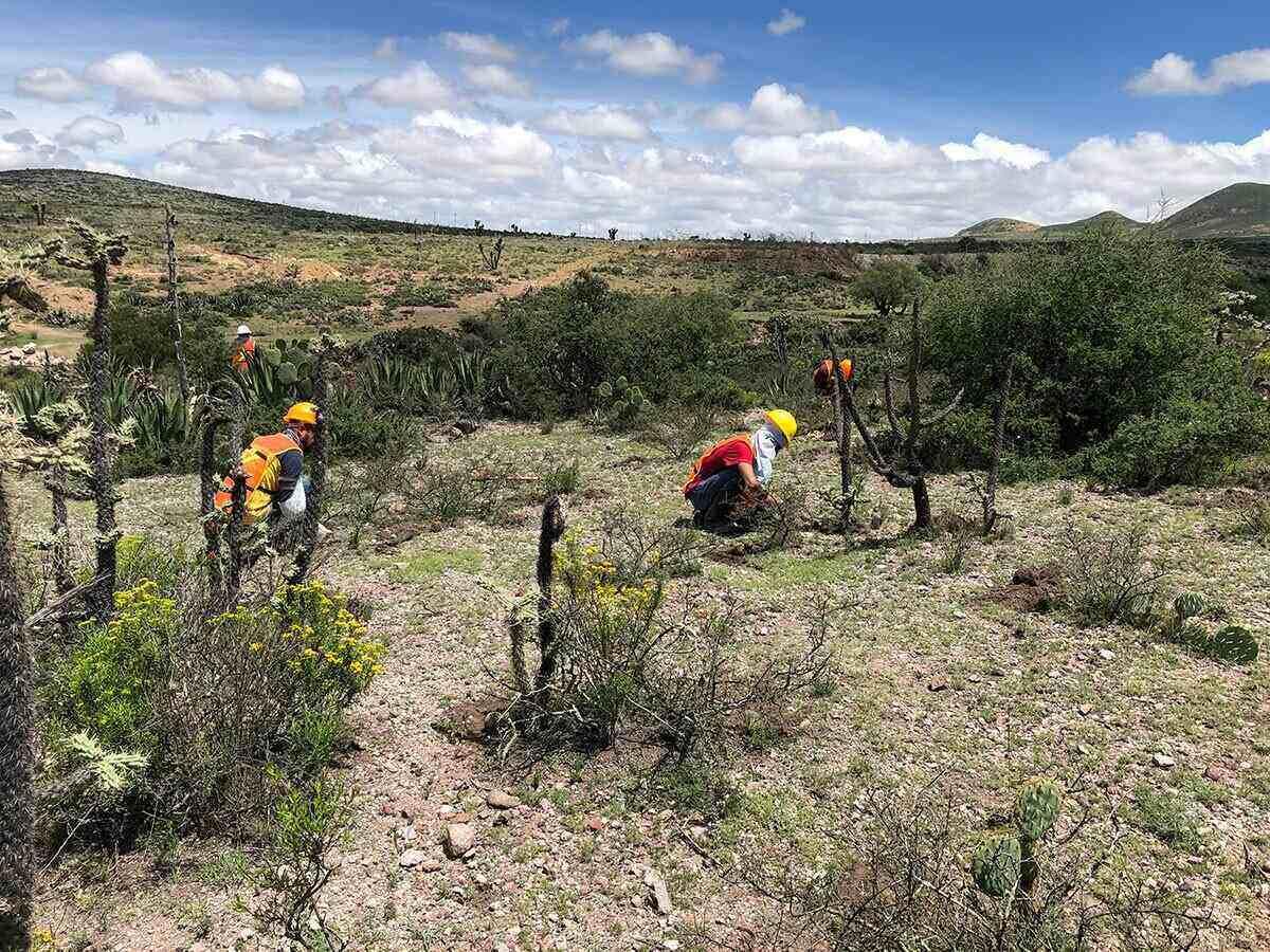 Financiamiento de Candelaria allana el camino para iniciar producción en México