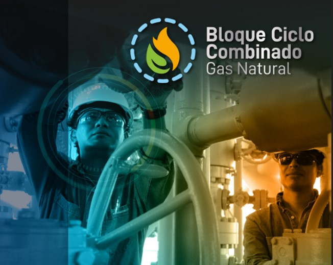 Ecuador begins concession process for a thermoelectric generation plant with natural gas