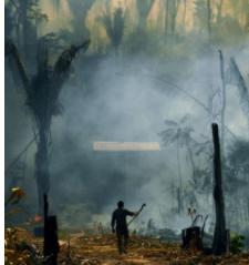 Empresariado brasileño pide a Bolsonaro conquistar a EE.UU. con giro medioambiental