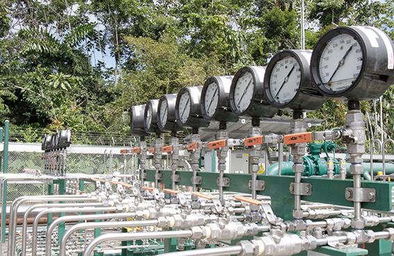 Ecuador's Petroamazonas set to drill Ishpingo field in H2