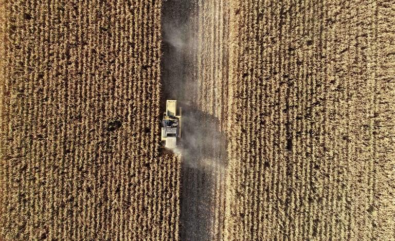 Brasil podría aumentar producción de etanol a partir de maíz