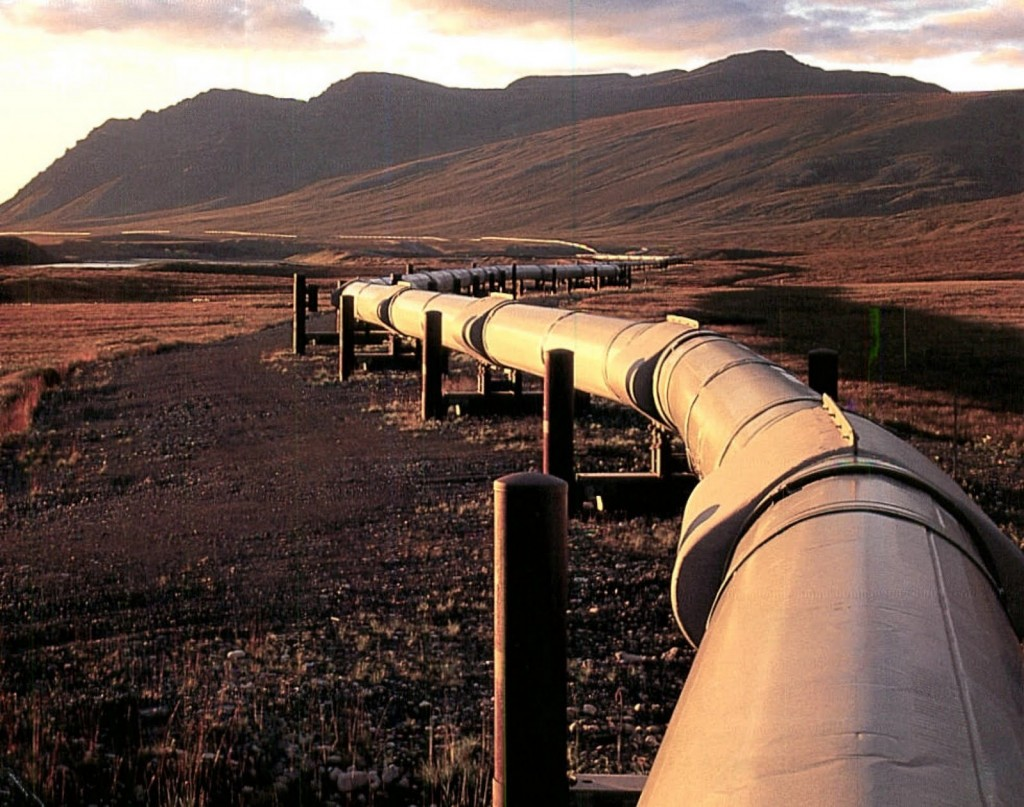 Regulator suggests restricting Bolivian gas imports