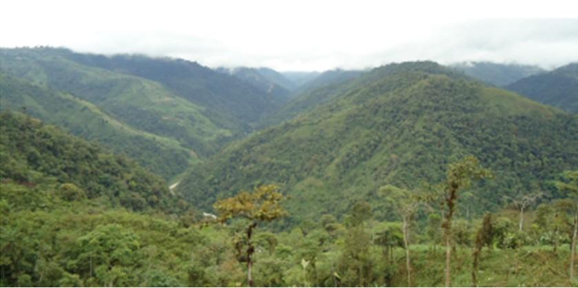 Generadora ecuatoriana actualizará proyecto hidroeléctrico