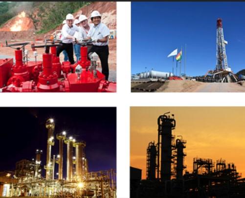 Radiografía a la inversión en hidrocarburos de Bolivia
