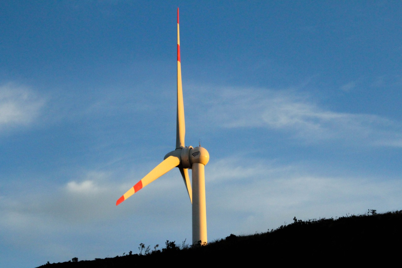 Ecuador seen to have great renewable energy potential