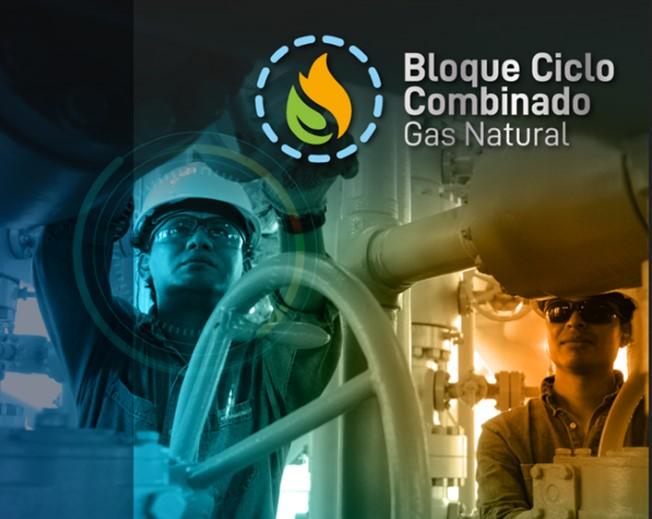 Ecuador inicia proceso de concesión de una central de generación termoeléctrica con gas natural