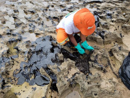 La lucha contra el desastre petrolero de Brasil une a varios sectores