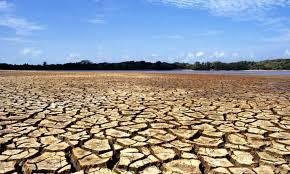 Iniciativa chilena sobre cambio climático avanza en el Senado