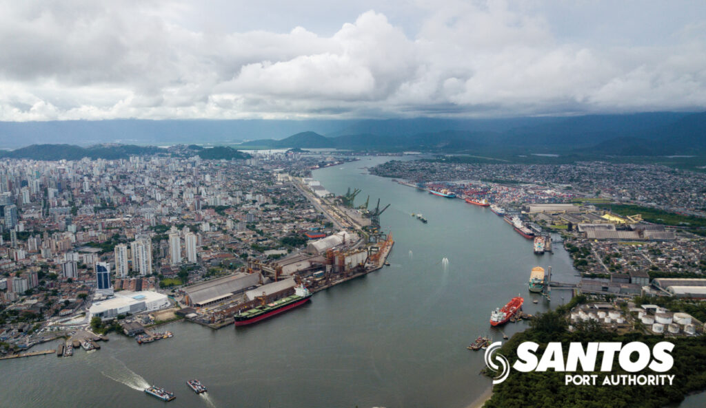 South America's busiest port heading for cargo record despite COVID-19