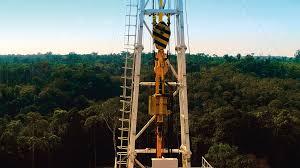 巴西Eneva看好亚马逊天然气市场