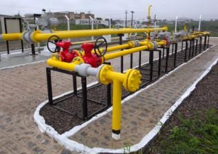 Radiografía a las 19 distribuidoras brasileñas de gas en bloque de subasta