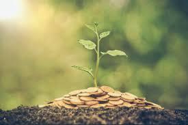 巴拉圭y onu firman alianza finandiera verde