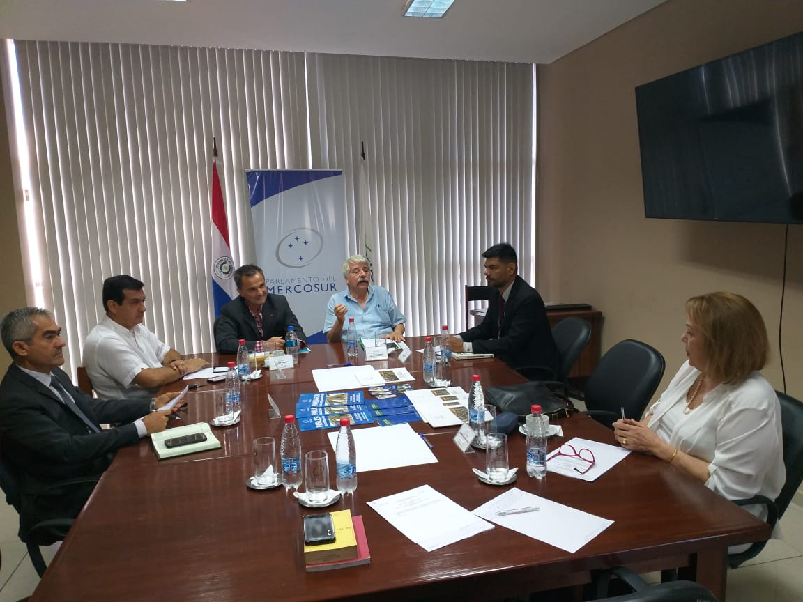 La delegación de Paraguay en el PARLASUR realizará audiencia pública sobre ley que enmarca revisión de Itaipú