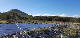 Chile pretende acelerar reforma de evaluación ambiental