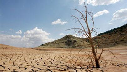 Reglas de créditos de carbono serán tema importante en COP26