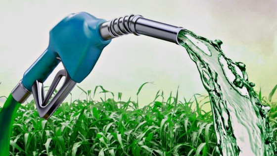 Could COVID-19 hamper Brazil's biofuels growth?