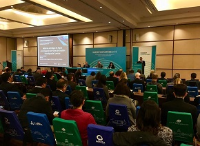 Chile combatirá extracción ilegal de agua