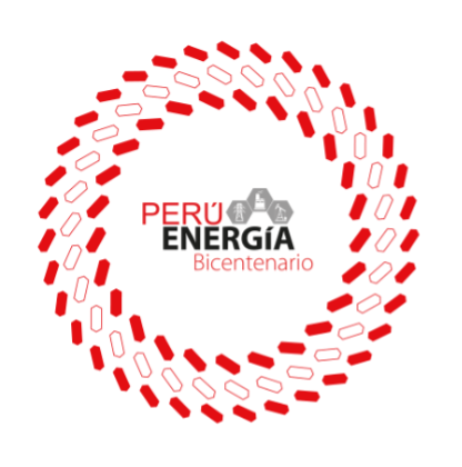 Peru Energia Bicentenario: guidelines and trends aimed at transition and energy efficiency
