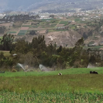 Ecuador llamará a concurso por proyecto de riego Chiquicahua